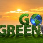 Green Is Our Aim, Bedore Tours